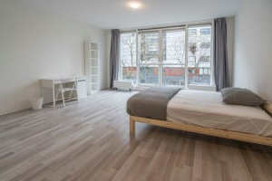 View room for rent in Amsterdam Carnapstraat, € 871, 20m2 - 395110. Interested? check out this room and leave a message!