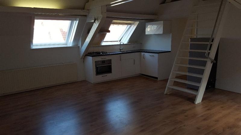 Te huur: Appartement Donkere Spaarne, Haarlem - 1