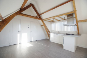 View studio for rent in Rotterdam Schiedamseweg, € 765, 26m2 - 371119. Interested? check out this studio and leave a message!