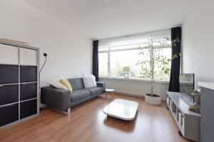 View apartment for rent in Den Haag P. Beatrixlaan, € 850, 55m2 - 366584. Interested? check out this apartment and leave a message!