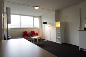 View room for rent in Zwolle Spaarne, € 550, 35m2 - 386530. Interested? check out this room and leave a message!