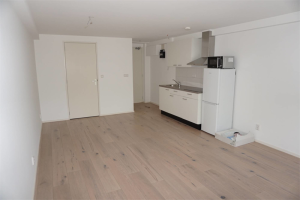 View studio for rent in Delft Griegstraat, € 815, 27m2 - 395328. Interested? check out this studio and leave a message!