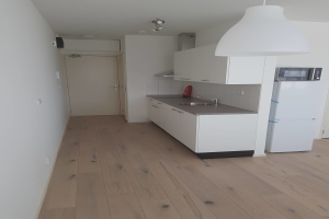 View apartment for rent in Delft Griegstraat, € 940, 40m2 - 394767. Interested? check out this apartment and leave a message!