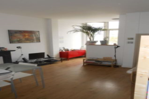 Bekijk appartement te huur in Den Haag Regentesselaan, € 765, 33m2 - 338777. Geïnteresseerd? Bekijk dan deze appartement en laat een bericht achter!