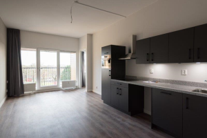 View apartment for rent in Amersfoort Hogeweg, € 975, 51m2 - 395640. Interested? check out this apartment and leave a message!