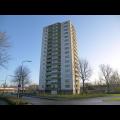 Bekijk appartement te huur in Apeldoorn Korianderstraat, € 850, 100m2 - 357989. Geïnteresseerd? Bekijk dan deze appartement en laat een bericht achter!