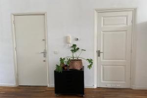 Bekijk appartement te huur in Den Haag Van Galenstraat, € 1195, 58m2 - 393671. Geïnteresseerd? Bekijk dan deze appartement en laat een bericht achter!