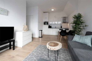 For rent: Apartment Hamerstraat, Den Haag - 1