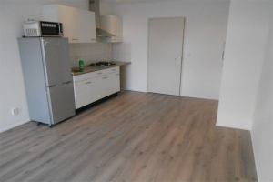 For rent: Studio Ternatestraat, Delft - 1