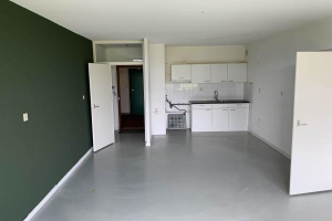 Bekijk appartement te huur in Dordrecht Octant, € 528, 66m2 - 365932. Geïnteresseerd? Bekijk dan deze appartement en laat een bericht achter!