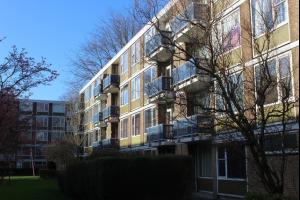 Bekijk appartement te huur in Haarlem Ledeboerstraat, € 85, 7m2 - 277237. Geïnteresseerd? Bekijk dan deze appartement en laat een bericht achter!