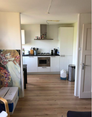 Te huur: Appartement Orteliusstraat, Amsterdam - 3