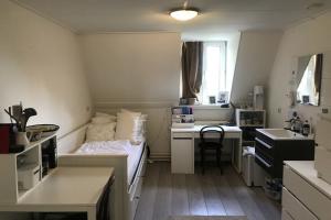 Bekijk kamer te huur in Maastricht Statensingel, € 550, 25m2 - 370255. Geïnteresseerd? Bekijk dan deze kamer en laat een bericht achter!
