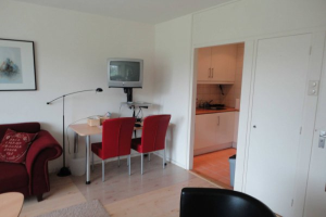 View studio for rent in Rotterdam Granadoslaan, € 650, 45m2 - 381252. Interested? check out this studio and leave a message!