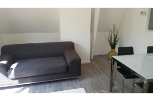 Bekijk appartement te huur in Rotterdam Van den Hoonaardstraat: Appartement - € 1250, 55m2 - 304104