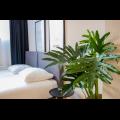 Bekijk appartement te huur in Rotterdam Eendrachtsweg, € 2750, 65m2 - 356636. Geïnteresseerd? Bekijk dan deze appartement en laat een bericht achter!