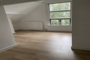 Bekijk kamer te huur in Rotterdam Tamboerstraat, € 650, 20m2 - 399046. Geïnteresseerd? Bekijk dan deze kamer en laat een bericht achter!