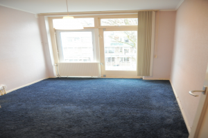 View room for rent in Den Haag Nieuwersluisstraat, € 495, 16m2 - 387748. Interested? check out this room and leave a message!