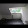 Te huur: Kamer Sonsbeekweg, Arnhem - 1