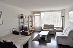 View apartment for rent in Amstelveen Mr. G. Groen van Prinstererlaan, € 1650, 65m2 - 373856. Interested? check out this apartment and leave a message!