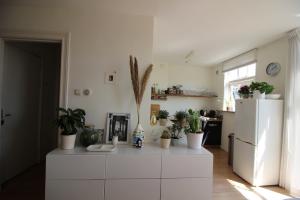 Bekijk appartement te huur in Utrecht Nicolaas Beetsstraat, € 1295, 50m2 - 392648. Geïnteresseerd? Bekijk dan deze appartement en laat een bericht achter!