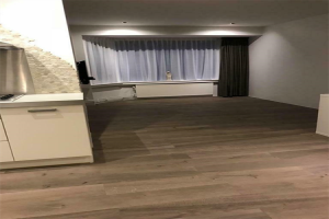 View apartment for rent in Leiden Hoge Morsweg, € 1200, 50m2 - 382063. Interested? check out this apartment and leave a message!
