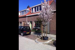 Bekijk woning te huur in Nijmegen Merelstraat, € 895, 60m2 - 335275. Geïnteresseerd? Bekijk dan deze woning en laat een bericht achter!