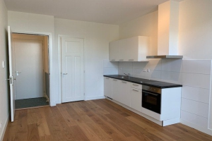 For rent: Studio Statenlaan, Den Haag - 1