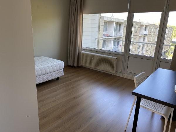 For rent: Apartment Bosseplaat, Rozenburg Zh - 2