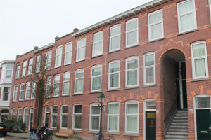 View room for rent in Den Haag Cartesiusstraat, € 425, 12m2 - 383368. Interested? check out this room and leave a message!