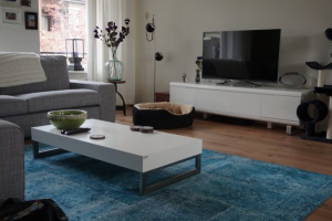 View apartment for rent in Groningen Vindicatstraat, € 1300, 85m2 - 366195. Interested? check out this apartment and leave a message!