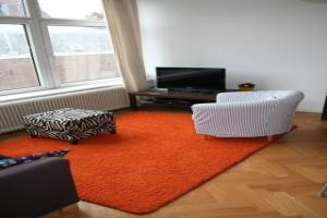 Bekijk appartement te huur in Den Haag Sweelinckplein, € 995, 50m2 - 362417. Geïnteresseerd? Bekijk dan deze appartement en laat een bericht achter!