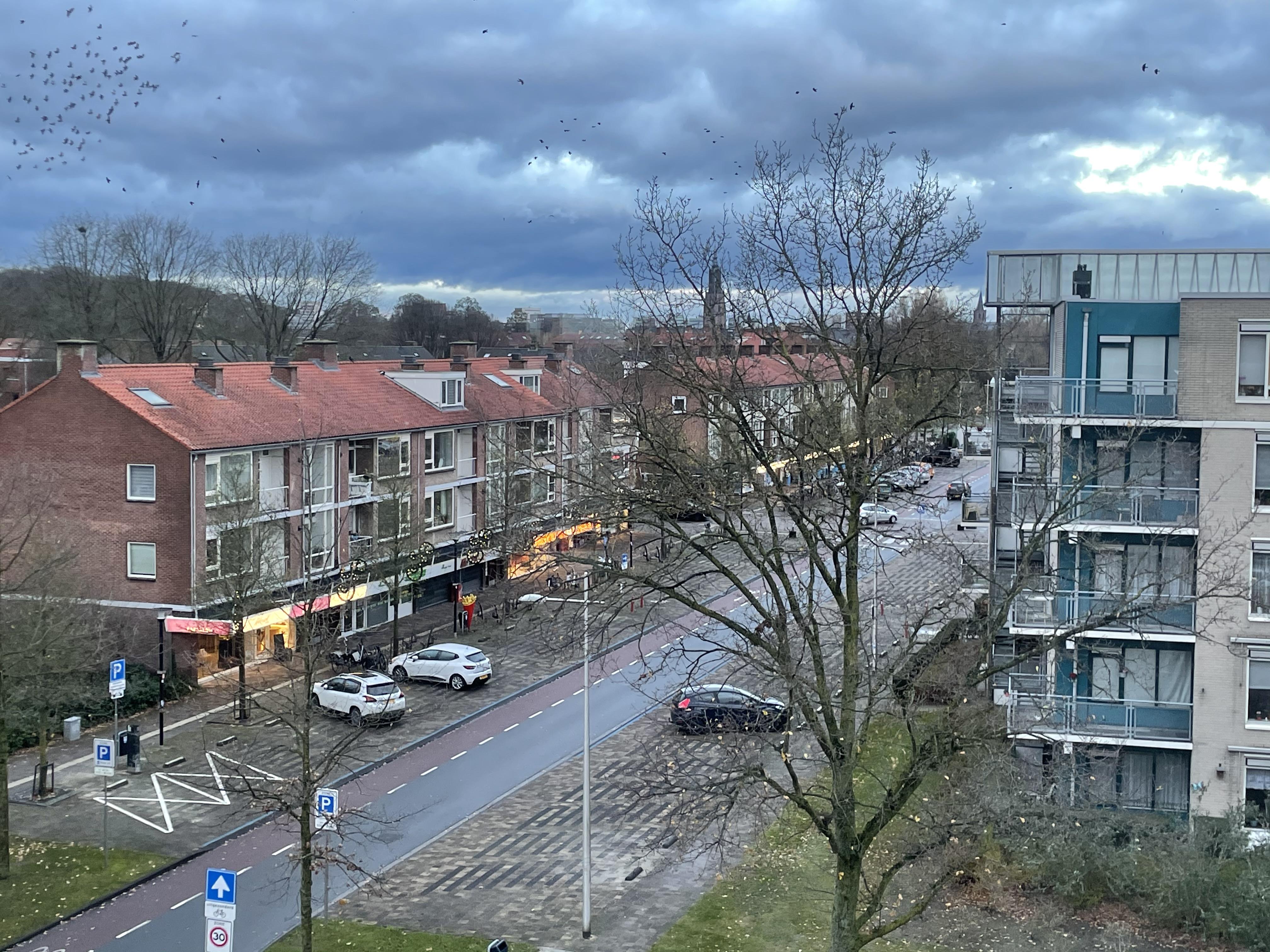 Te huur: Appartement Ringweg-Randenbroek, Amersfoort - 5