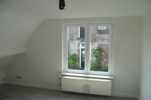 View room for rent in Den Bosch Postelstraat, € 425, 14m2 - 361599. Interested? check out this room and leave a message!