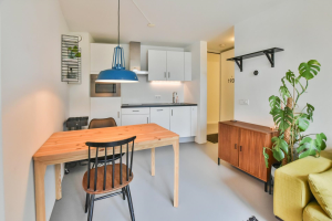 For rent: Apartment Planciusstraat, Amsterdam - 1