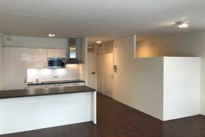 Bekijk appartement te huur in Den Haag L. Nieuwstraat, € 875, 40m2 - 353668. Geïnteresseerd? Bekijk dan deze appartement en laat een bericht achter!