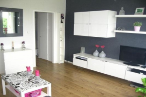 For rent: Studio Akeleistraat, Spijkenisse - 1