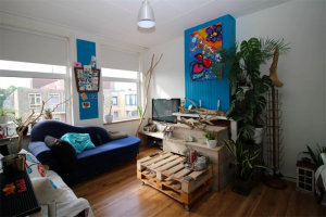 For rent: Apartment Pluvierstraat, Den Haag - 1