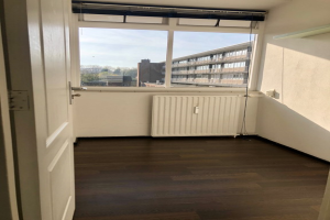 For rent: Room Dovenetellaan, Arnhem - 1