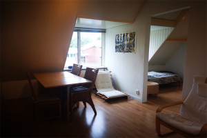 View apartment for rent in Leiden Rijnsburgerweg, € 800, 30m2 - 396137. Interested? check out this apartment and leave a message!