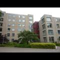 Bekijk appartement te huur in Nijmegen Oude Graafseweg, € 925, 80m2 - 316004. Geïnteresseerd? Bekijk dan deze appartement en laat een bericht achter!