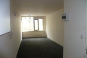 For rent: Apartment Wittevrouwensingel, Utrecht - 1