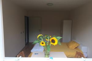 Bekijk kamer te huur in Rotterdam Oostmaaslaan, € 650, 18m2 - 394470. Geïnteresseerd? Bekijk dan deze kamer en laat een bericht achter!