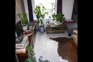 Bekijk appartement te huur in Tilburg Koestraat, € 636, 70m2 - 310147. Geïnteresseerd? Bekijk dan deze appartement en laat een bericht achter!