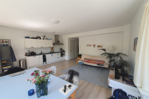 View apartment for rent in Groningen Ubbo Emmiusstraat, € 1200, 55m2 - 394976. Interested? check out this apartment and leave a message!