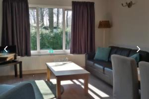 Bekijk appartement te huur in Zorgvlied De Gavere, € 650, 27m2 - 384449. Geïnteresseerd? Bekijk dan deze appartement en laat een bericht achter!
