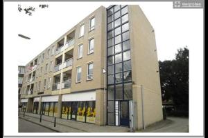 Bekijk appartement te huur in Apeldoorn Paul Krugerstraat, € 650, 80m2 - 304797. Geïnteresseerd? Bekijk dan deze appartement en laat een bericht achter!