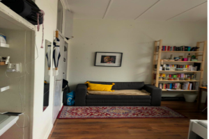 View room for rent in Leiden Pasteurstraat, € 400, 20m2 - 387295. Interested? check out this room and leave a message!
