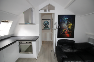 For rent: Apartment Frans Halslaan, Hilversum - 1