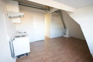 View studio for rent in Breda Willemstraat, € 675, 22m2 - 372867. Interested? check out this studio and leave a message!